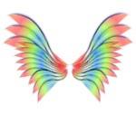 Las alas robadas