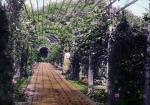 El Jardín secreto : audiolibro