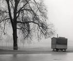 Niebla : Novela
