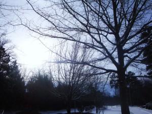 Imagen: Invierno
